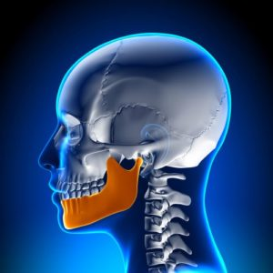 Cutaway diagram of clenched jaw